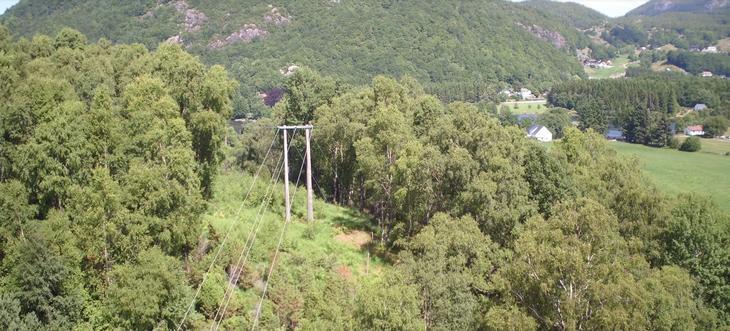 Flyfoto av kraftlinje som går over en ås langs et skogsområde i Strand